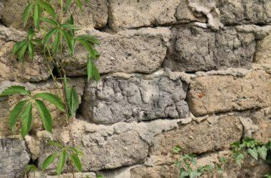 Quando serve il permesso di costruire per realizzare un muro?