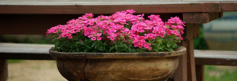 Il posizionamento di fioriere: quale titolo edilizio?